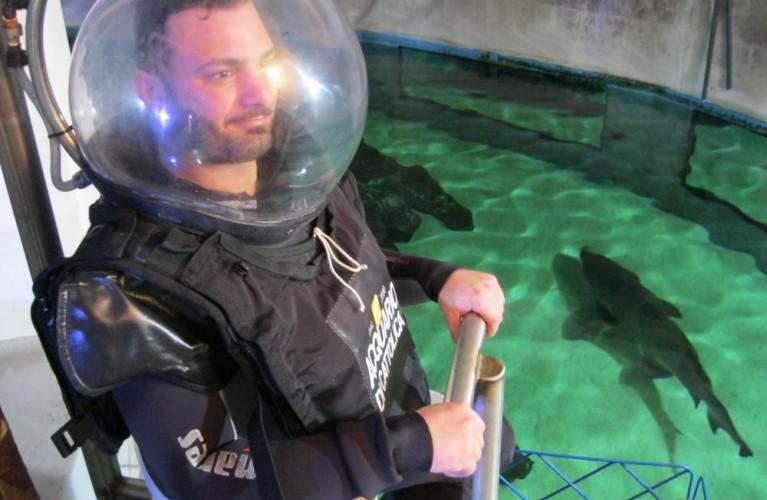 La vita in diretta Rai 1 per l'addio al celibato tra gli squali