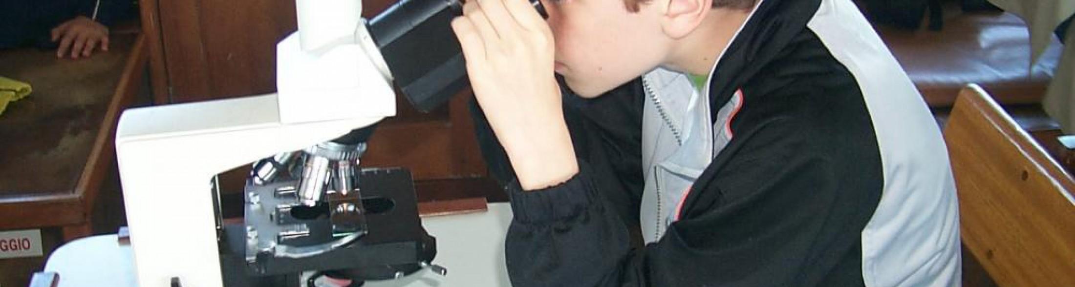 Laboratorio in una goccia: il Plancton