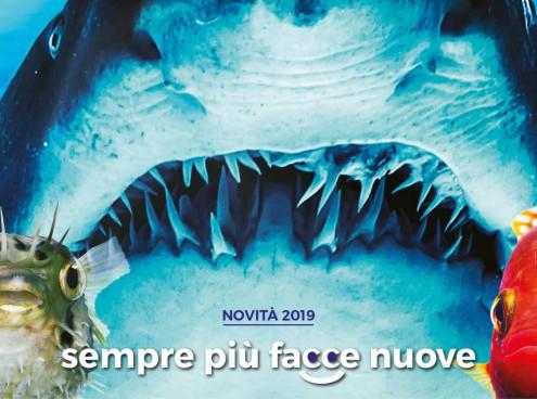 L'Acquario di Cattolica riapre il 6 aprile