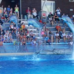 Tutti i parchi Costa tornano aperti dal 15 giugno